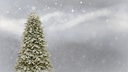 christmas-3006743_960_720